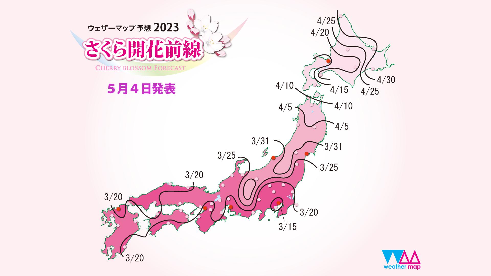 予想 桜 開花